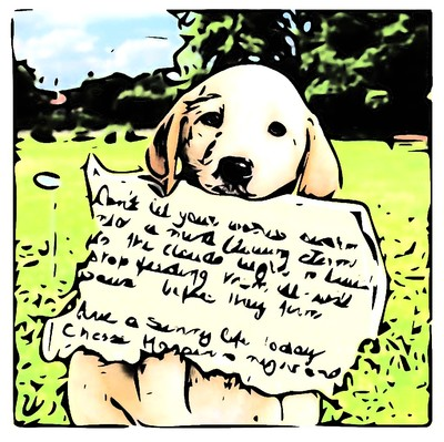 cute puppy, note, poetry