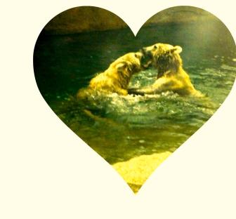 kissing, love, mating