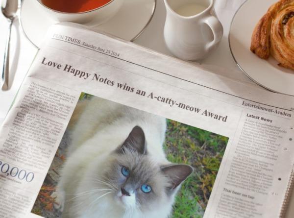 fantastic, cats, funny cats