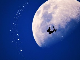 the most amazing show on Earth, amazing, wonderful, science, lunar,