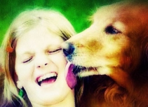 licking dog, puppy, affection