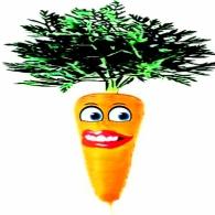 carrot, wisdom, silliness, fun